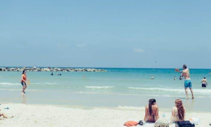Пляж дельфинария